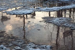 Parasols d'hiver copie.jpg