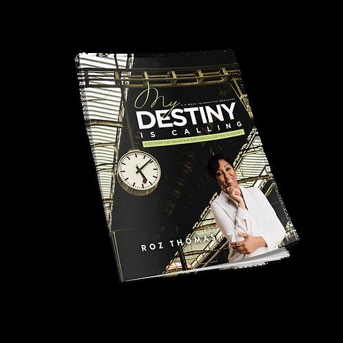My Destiny Is Calling Workbook