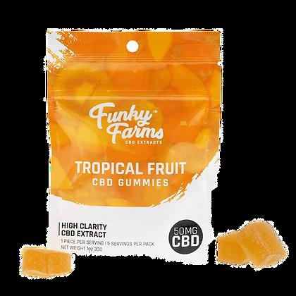 Tropical Fruit Gummies - 50mg