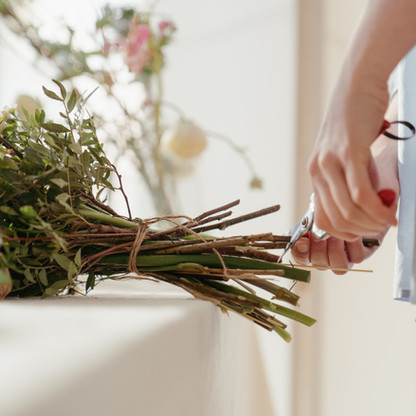 entretien des plantes - conciergerie
