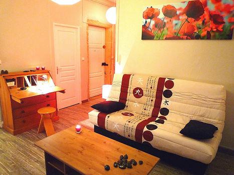 Cuisine fermée toute équipée + vaisselles avec plaque vitrocérame, réfrigérateur, mobilier intégré, 1 four micro-onde grill, plan de travail/bar + tabourets aciers, une salle d'eau avec une douche fermée et mitigeur thermostatique, un meuble vasque,+ miroir et 1 machine à laver le linge, deux grands placards dans la pièce principale, un couchage clic clac avec un vrai matelas confortable, une table + un meuble TV avec TV led + un secrétaire, un WC séparé. Deux fenêtres avec double vitrage et volets bois. Parquet stratifié ton bois cérusé gris. De très belles pierres de taille pour les passages de portes.  Une place de parking est comprise dans le bail  Le chauffage est assuré par une chaudière individuelle au gaz (entretien compris)  L'eau chaude est assurée par la chaudière.  Un lave linge 5kg équipe ce logement.  TV Led de 66cms avec lecteur DVD incorporé.  Situé au 1er étage dans une maison bourgeoise redécoupée. (Ancienne maison du Lieutenant Colonel Girard classée monument historique) une cour fait partie de l'ensemble.  Un vigicode assure votre tranquillité