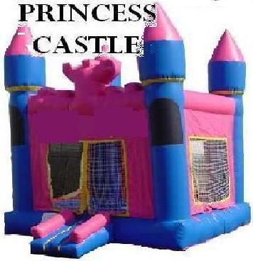 pink castle.jpeg
