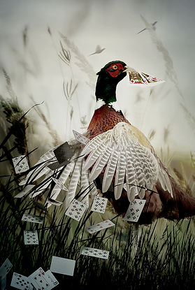 Poker Birds_2.jpg