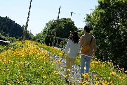 レンタル彼女 WiXi 東京 大阪 福岡 愛知