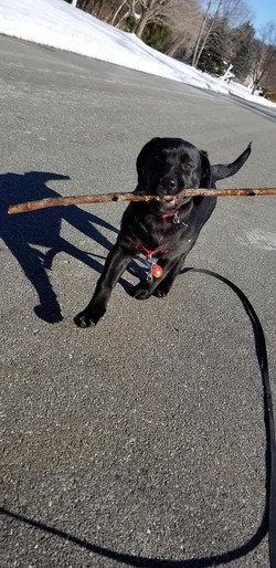 with stick