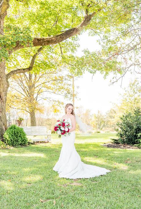 Wedding bridal phtography professional