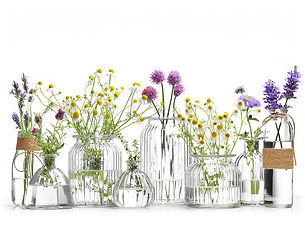 service-aromatherapie.jpg