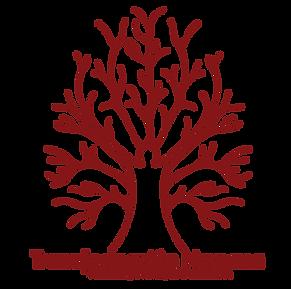 trasnformación humana.png