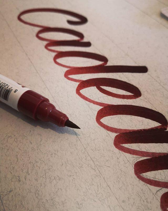 Brush pens ecoline 🔥 - - - #lettering #