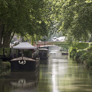 TOULOUSE: NETTOYAGE DES BERGES ET DU CANAL SAMEDI