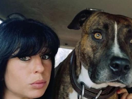 Affaire Elisa Pilarski: rebondissement, les tests ADN des chiens jugé trop cher !
