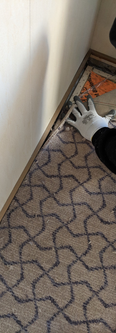 carpet  5.jpg