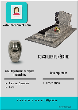 Affiche VIP 1.png