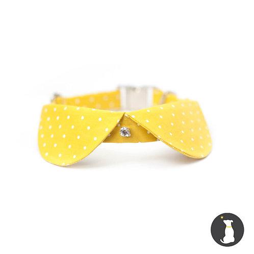 Collar Dogue - Baúl de Coco