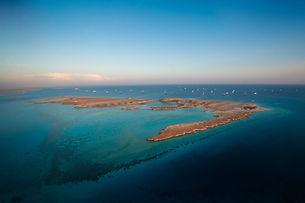 Red Sea Week 2019