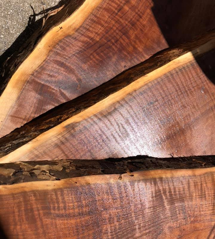HSBS #49 will be made from this beautiful walnut.