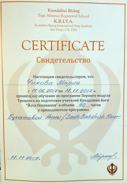 Мария Чижова Сертификат 2