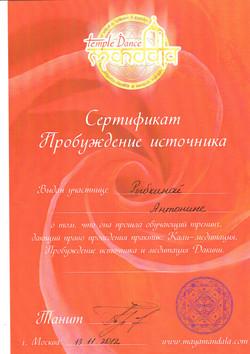 Диплом Антонины 9