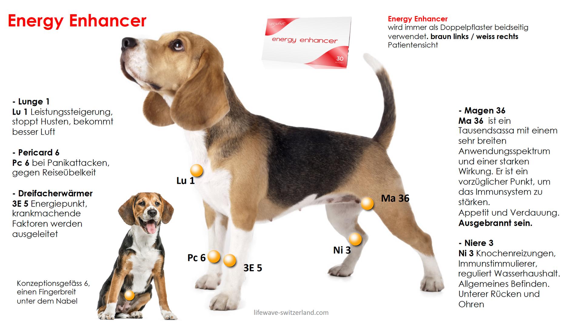 2.6 Energy Enhancer.png