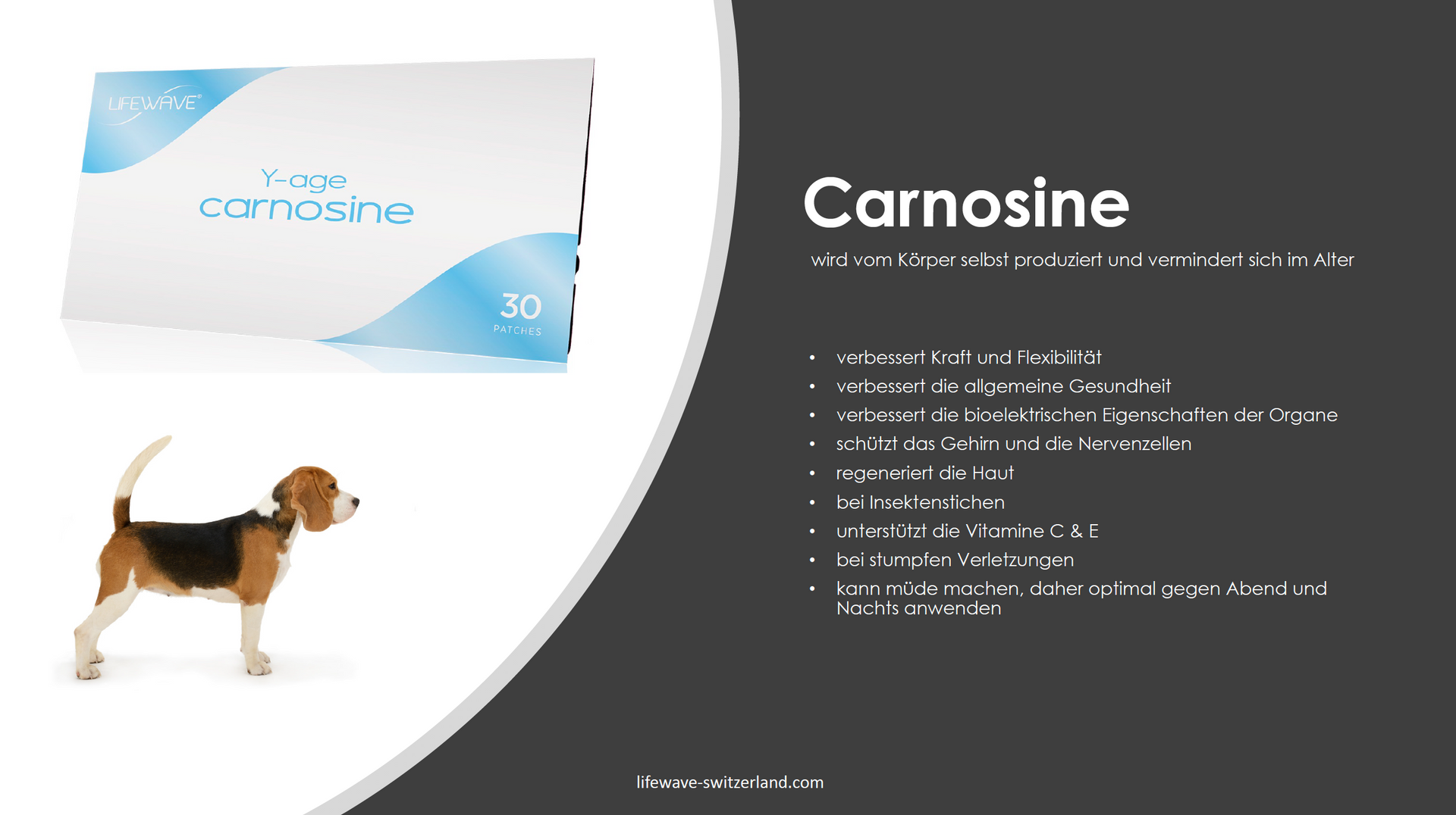 2.13 Carnosine.png