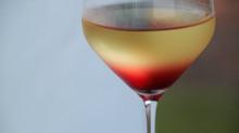 Wine Wednesday - Choosing Favorites