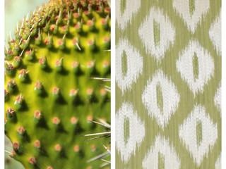 The Nature of Design - Inspiration Cactus