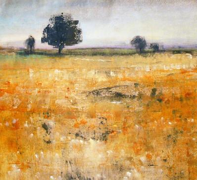 Open Field I
