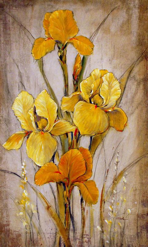 Golden Iris I