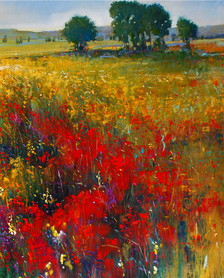 Colorful Meadow