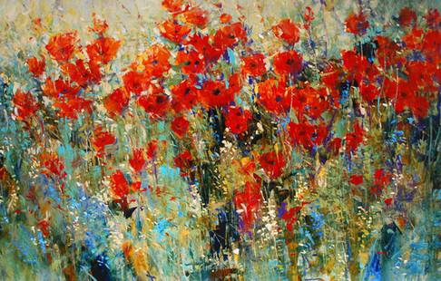 Colorful Poppy Field