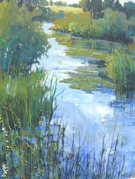 Along the Marsh