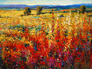 Field of Color I