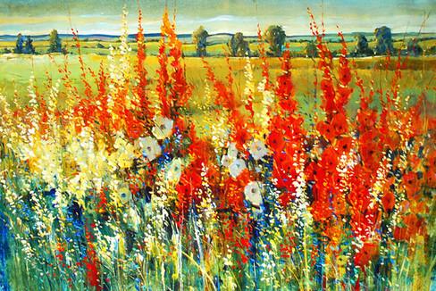 Wildflower Pathway