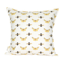 Bee & Moth Colour 60x60cm