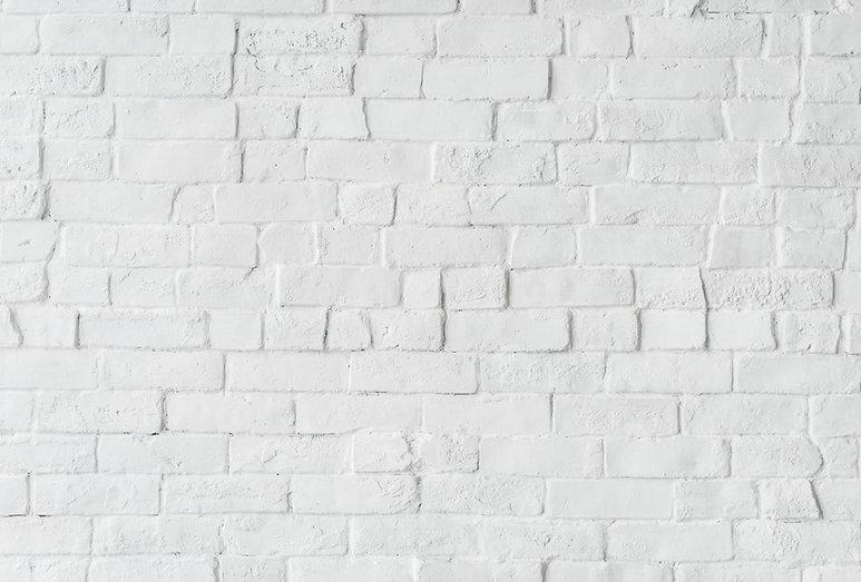 bricks-brickwall-brickwork-1092364 copy.
