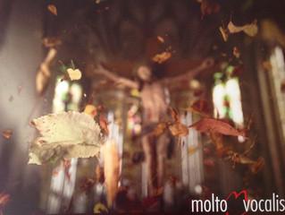 Mozart Requiem mit »molto vocalis«
