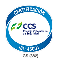 iso45001 LOGO.png