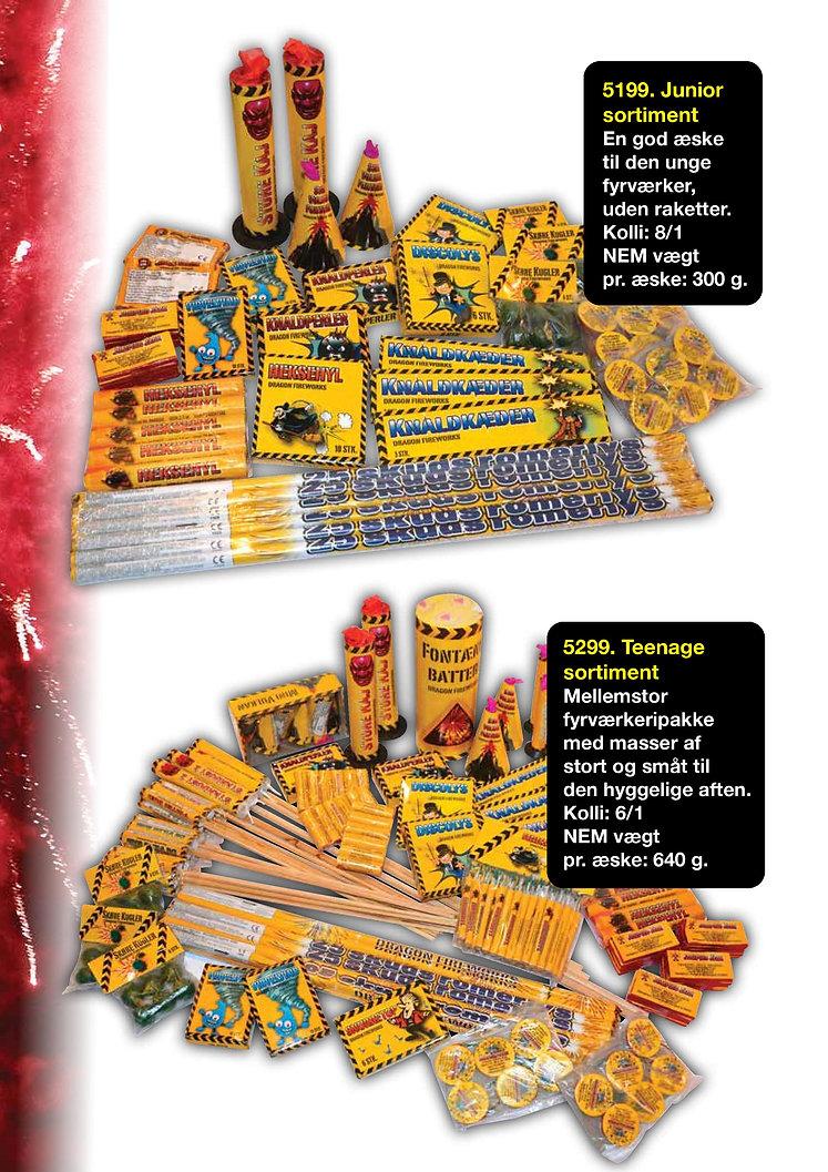 Salgskatalog DPA fireworks.2020-page-018