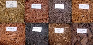 What is the benefit of mulch in your garden?