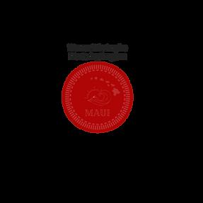 trans plogo wmyfb plain simple fav (16).