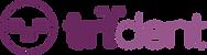 trident_logo_fullsize.png
