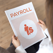 Payroll Services.png