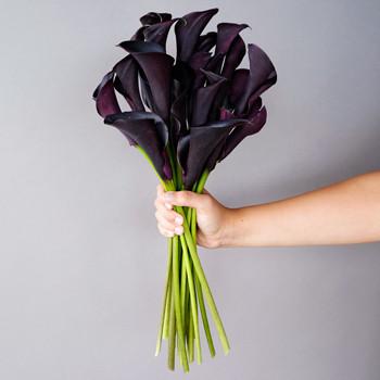 O lírio (ou copo-de-leite) preto é utilizado para fabricar florais para tratamento de depressão.