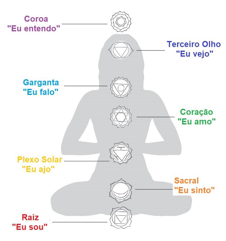 Os 7 Chakras alinhados na medula espinhal.