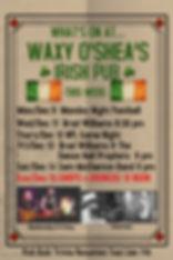 Copy of Cricket tournament flyer banner
