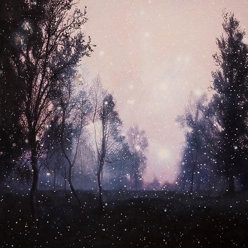Sorte trær med stjerner. Trykk.80 x 80cm.