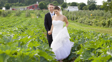 Barn Wedding in Peabody, MA
