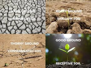 Tilling Your Soil