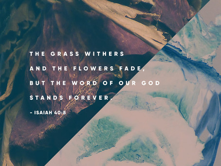 Promise: God's Word is Forever