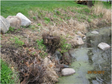 Assistance Available for Lakeshore Owners Who Have Eroding Shorelines